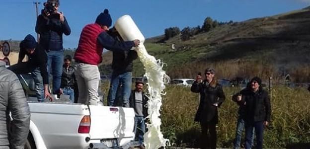 Guerra del latte. Possibili soluzioni