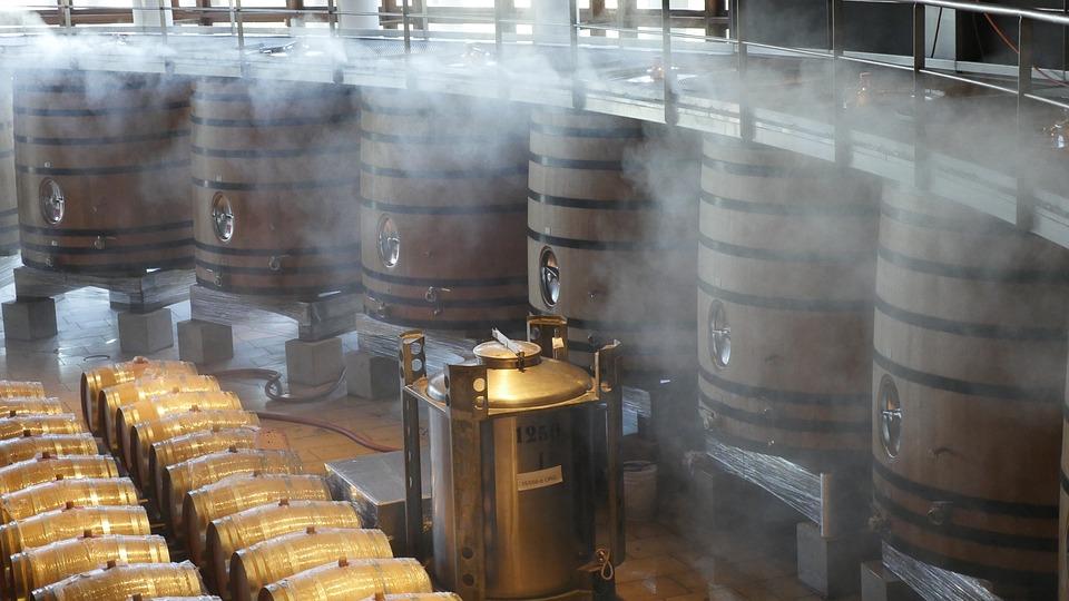"""Più vino, più frodi. """"Made in"""" e qualità italiana a rischio"""